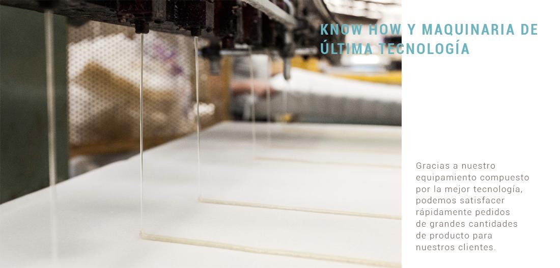 El saber hacer y la maquinaria de última tecnología son la base de nuestros productos